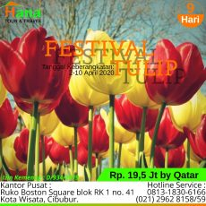 Turki Tulip Festival April 2020